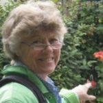 Profilbild för Lillemor Starlander